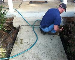 Dead animal removal Charlottesville VA